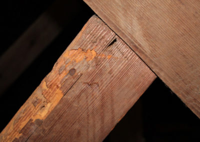 Das Holz im Dachstuhl leidet.